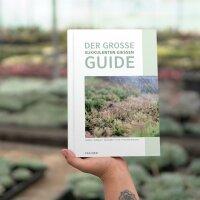 Sukkulenten richtig gießen (PDF - eBook)