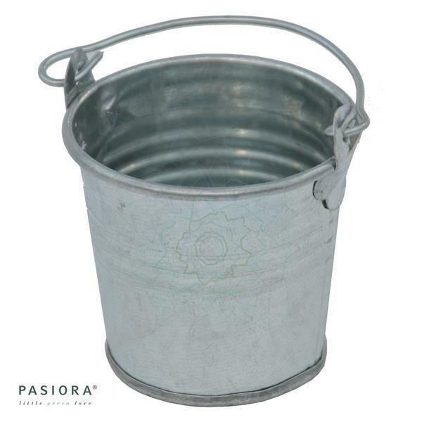 Zinkeimer, Silber für 5,5cm Sukkulenten