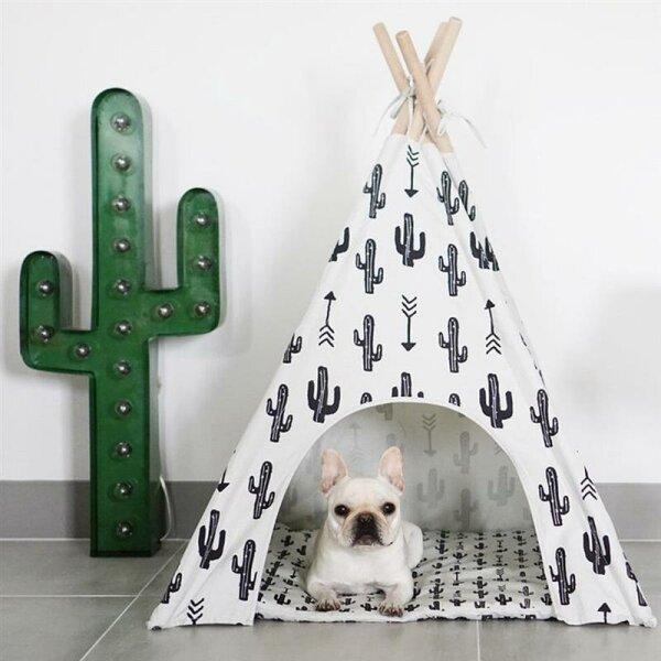 Kaktus Tipi für Hunde
